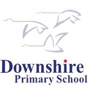 Downshire Primary