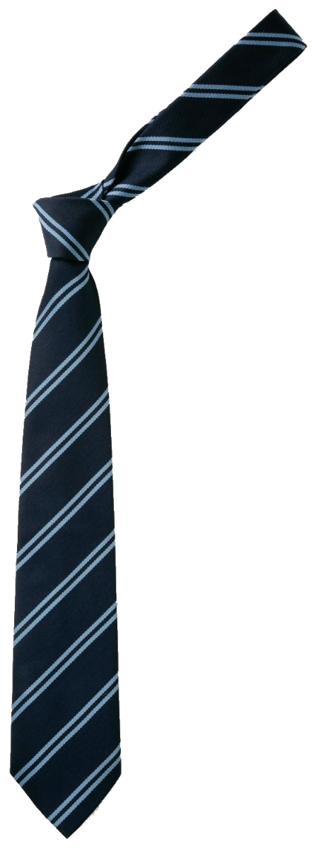 Tie Navy/ double sky stripe